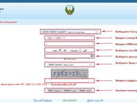 Проверка визы в ОАЭ